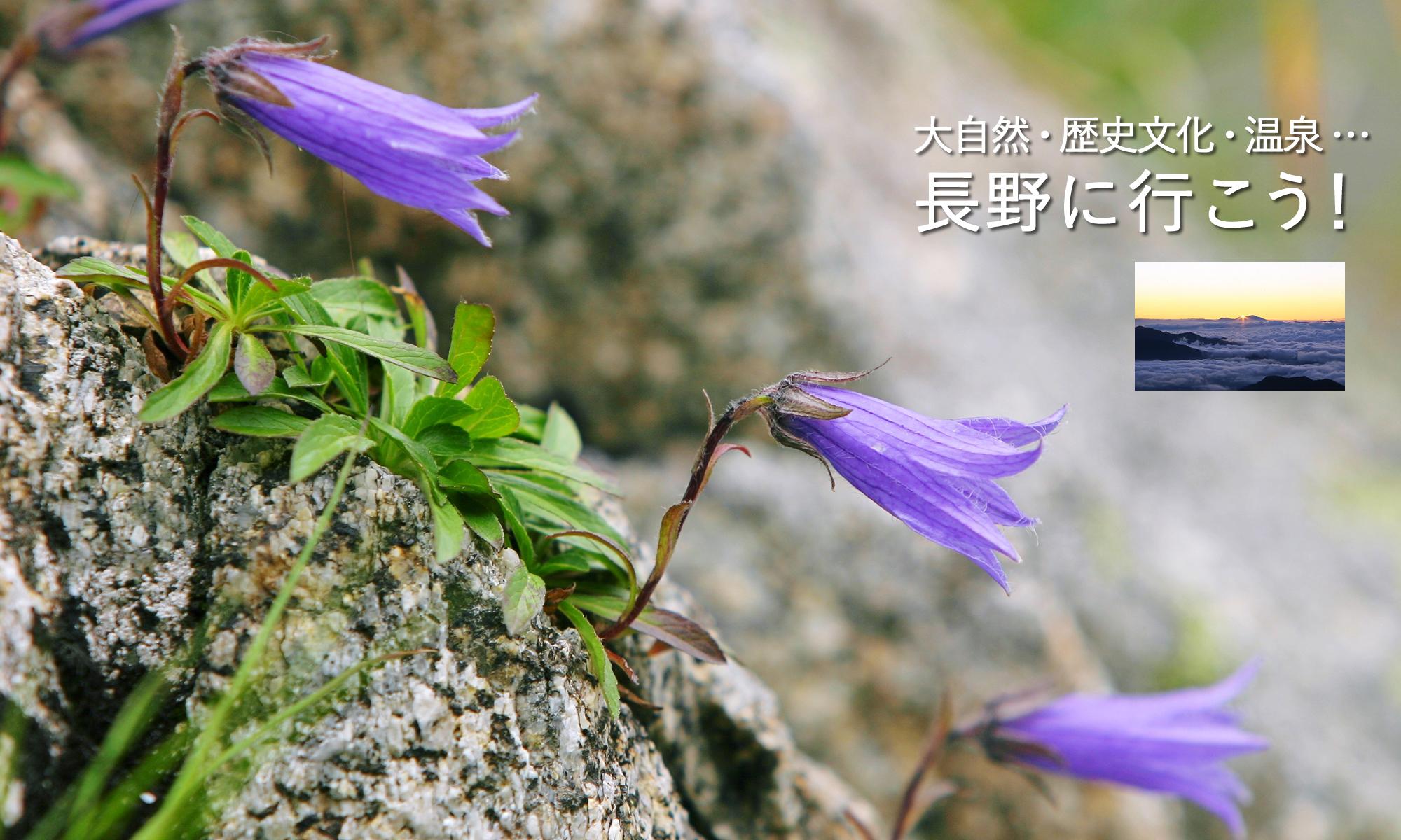 大自然が一番輝く季節